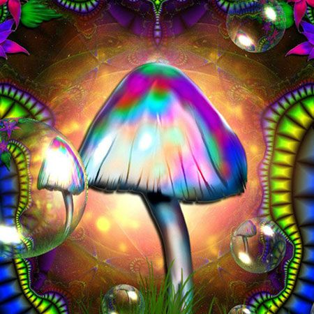 psychedelic-shirt-trance-festival-clothing-sol-seed-of-life-seed-magic-mushrooms
