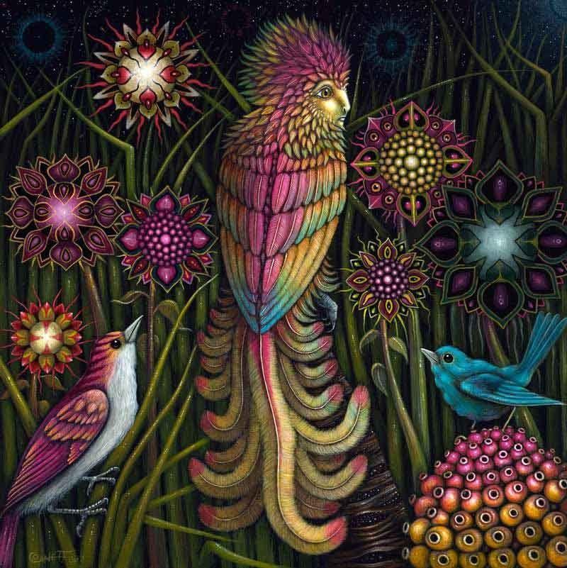 psychedelic-trance-festival-fashion-clothing-psychedelic-rsconnett-birds