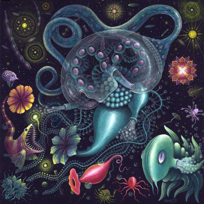 psychedelic-trance-festival-fashion-clothing-psychedelic-rsconnett-siphonophore
